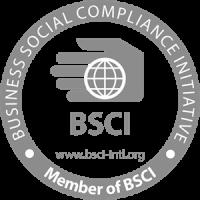 bsci-logo-9A2B890575-seeklogo.com